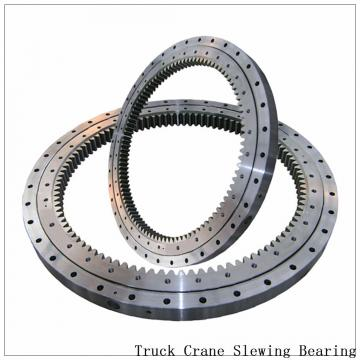 Worm Drive Slewing Ring Double Row