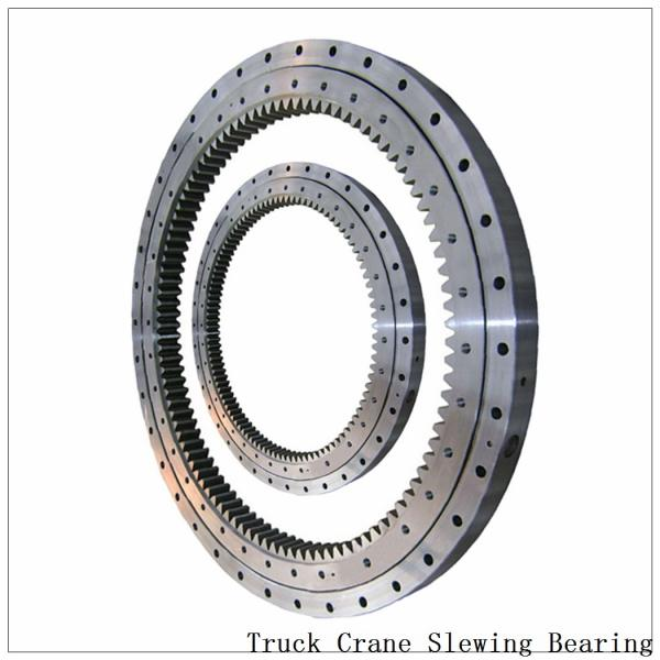 Four Point Contact Ball Slewing Bearing with Internal Gear 9I-1b20-0956-1010 #1 image